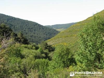 Senderismo Sierra de la Demanda- Atapuerca y Alto Oca; blog senderismo